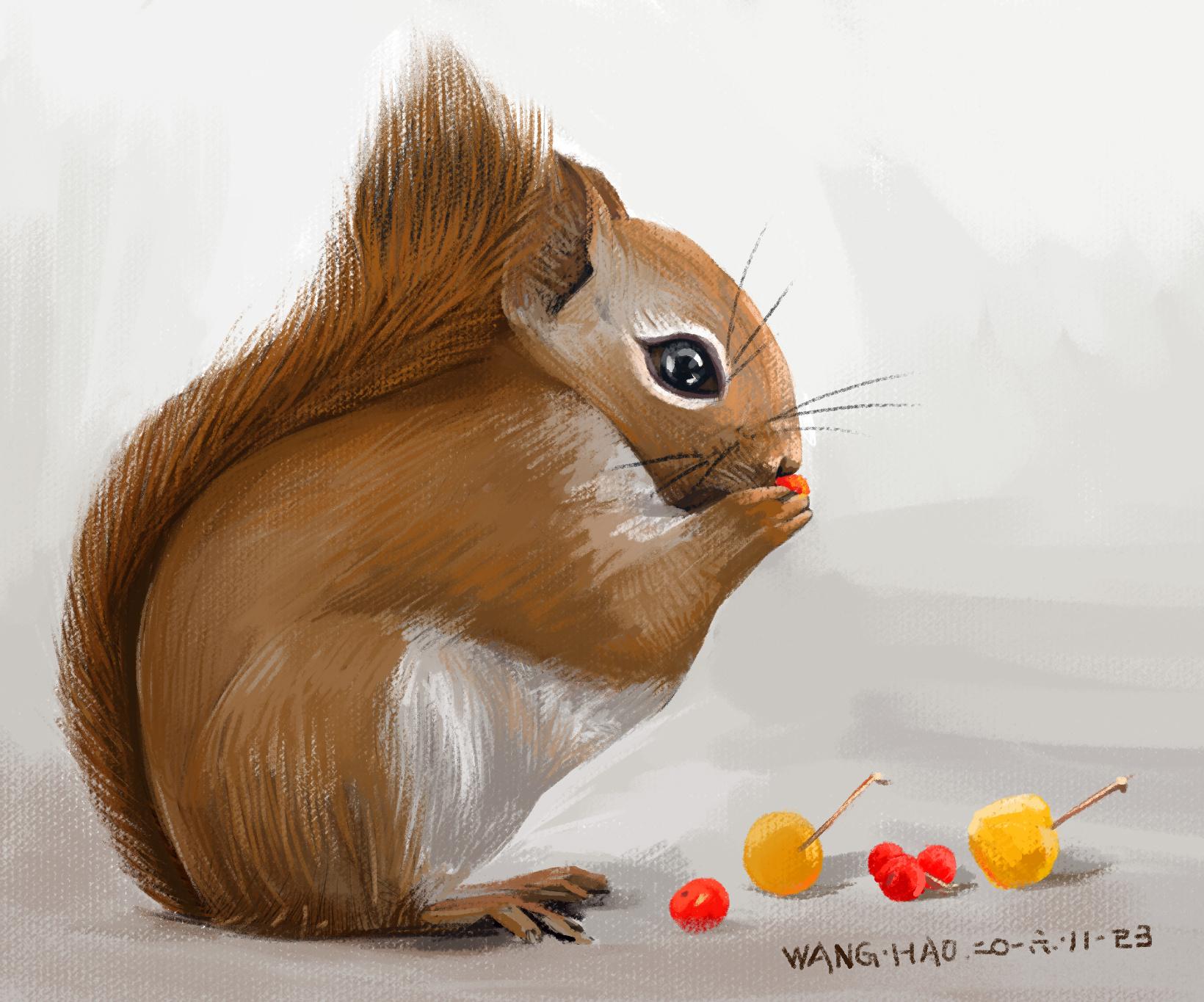 手绘写实小动物