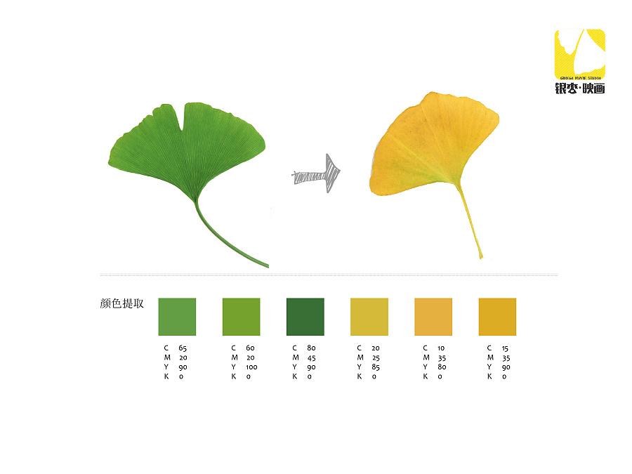 【银杏映画】以树叶为主题的vi设计