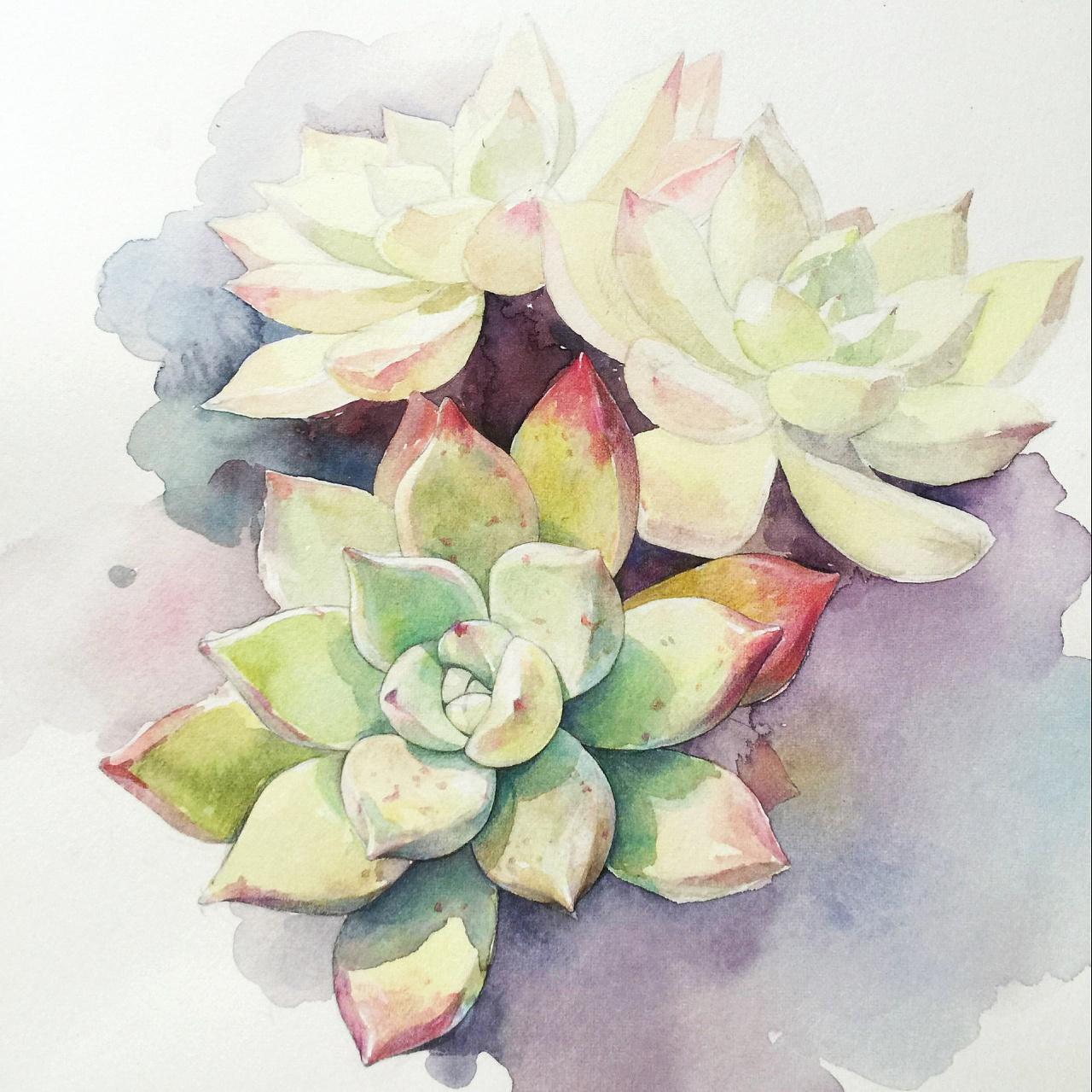 鲜花人手绘图片