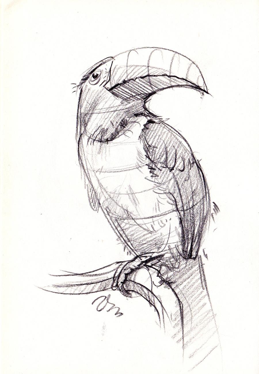 工业产品设计手绘之师法自然系列