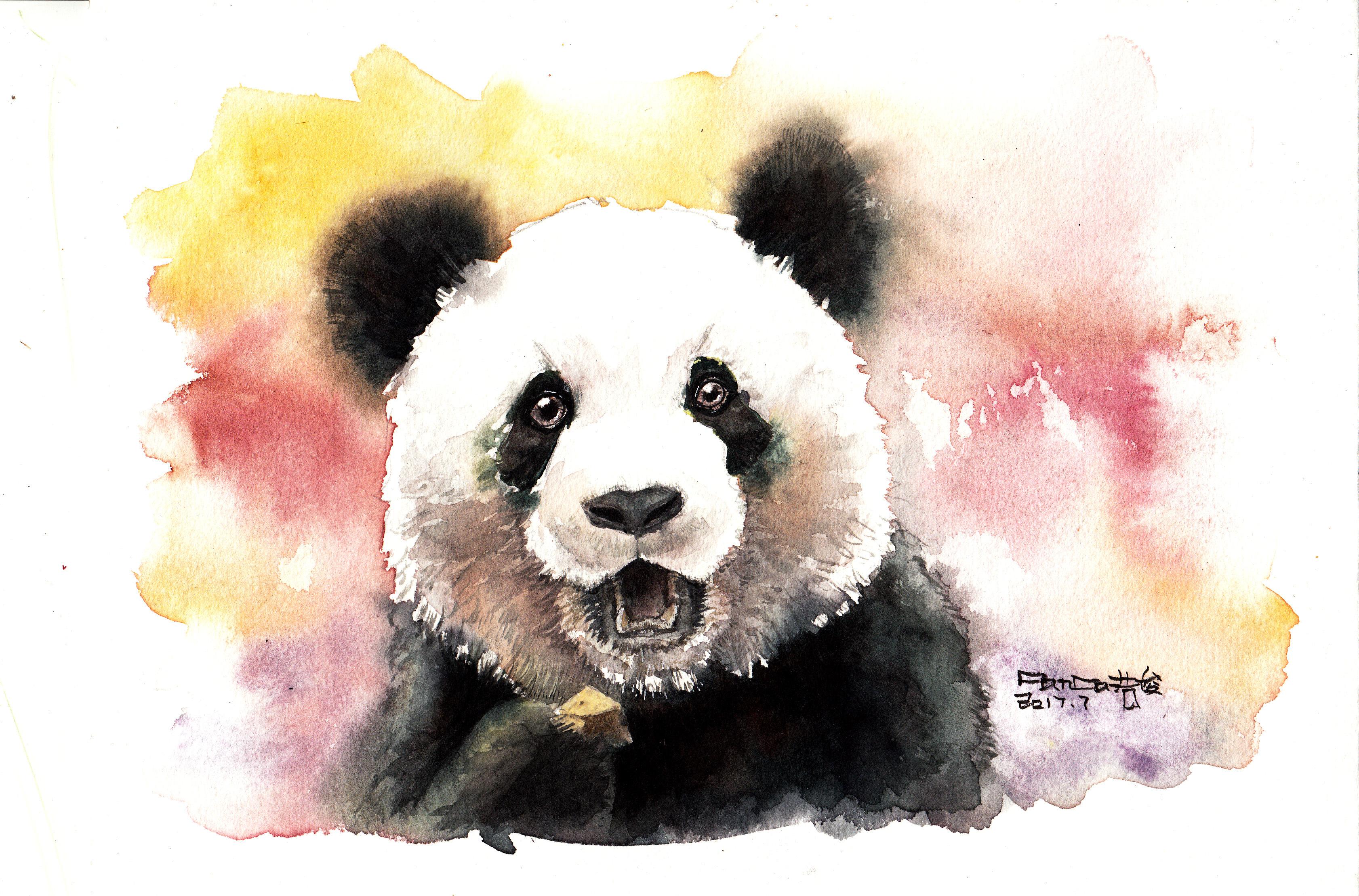 熊猫水彩【奥利奥】