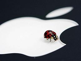 我在苹果里捉了只虫