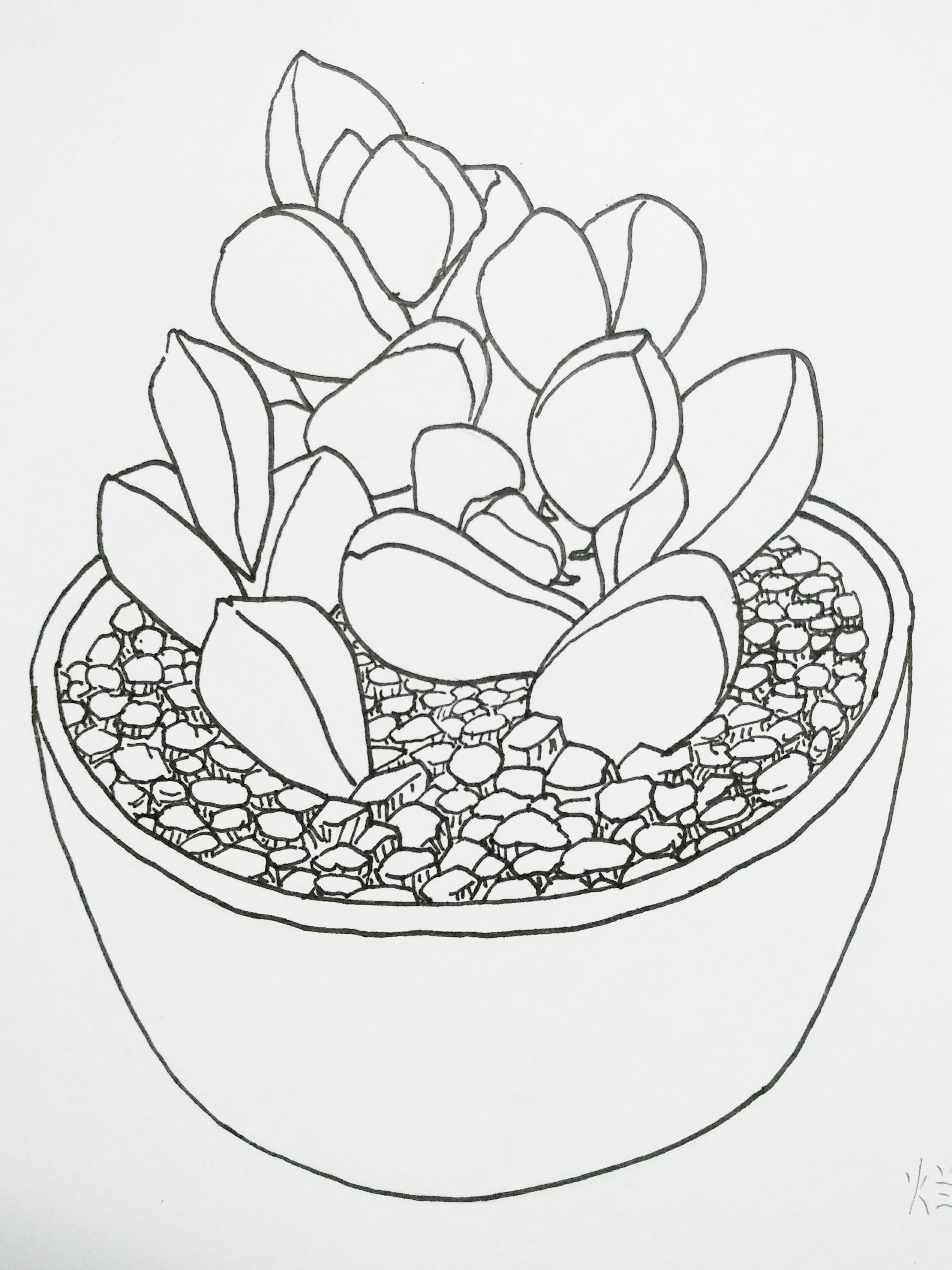 手绘涂鸦线条画
