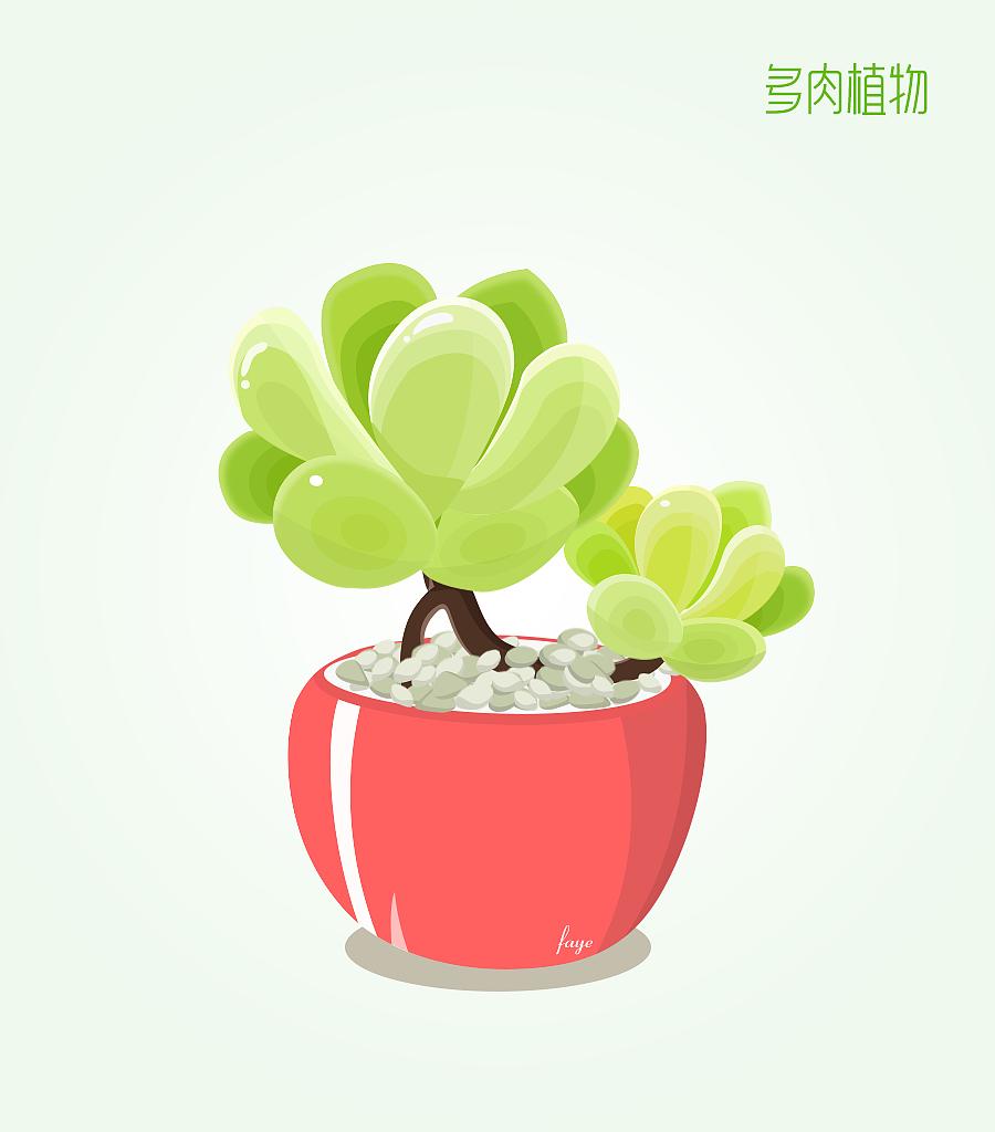 植物成长记录图