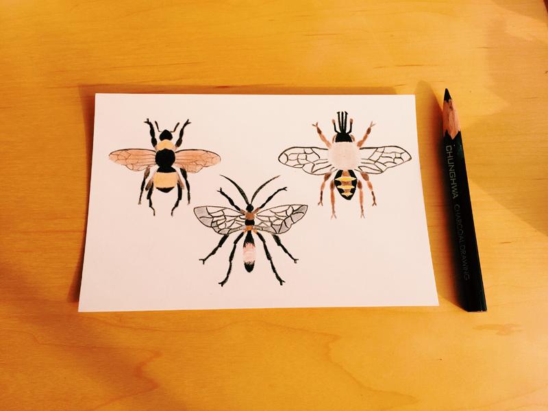 手绘练习 卡片插画|绘画习作|插画|羊棉花