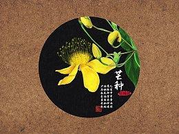 【驴大萌彩铅教程229】24节气花卉手绘图鉴—芒种芒种花