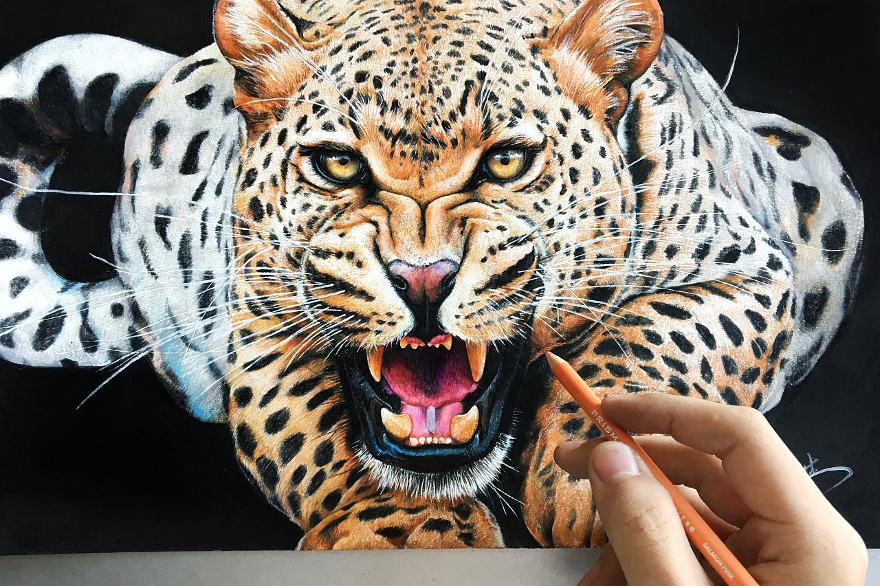 壁纸 动物 虎 老虎 桌面 1280_853