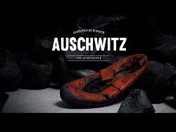 我去了趟奥斯维辛,才知道凶手并不只是纳粹