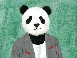 穿衣服的动物系列合集~