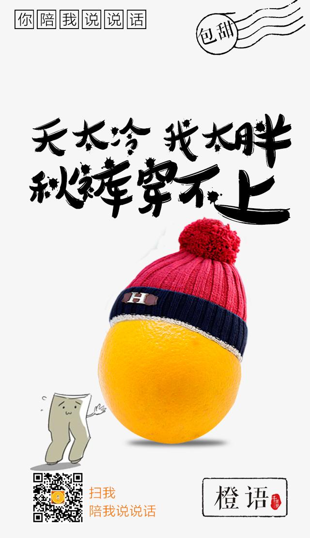 脐橙宣传趣味海报