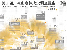 形影--关于四川凉山森林火灾调查报告