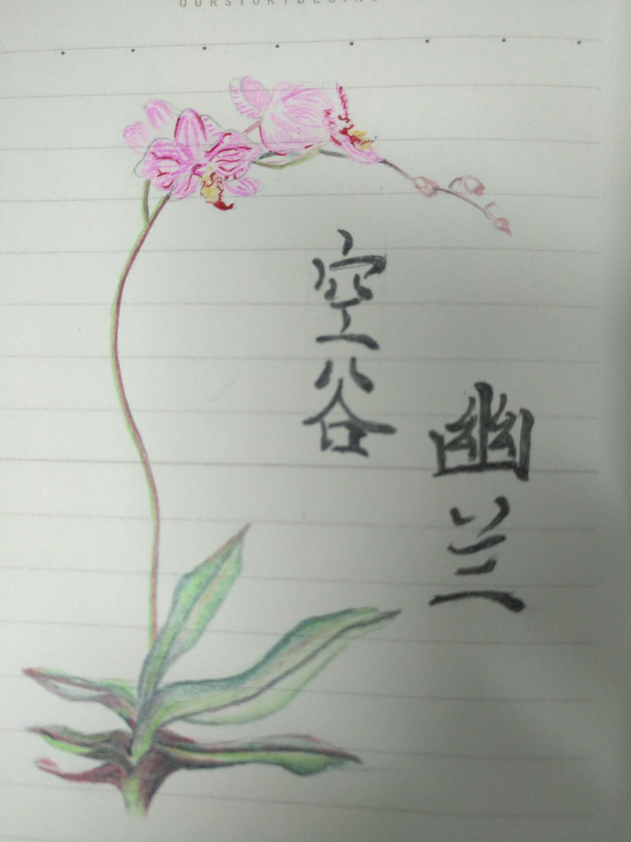 一些简单的手绘