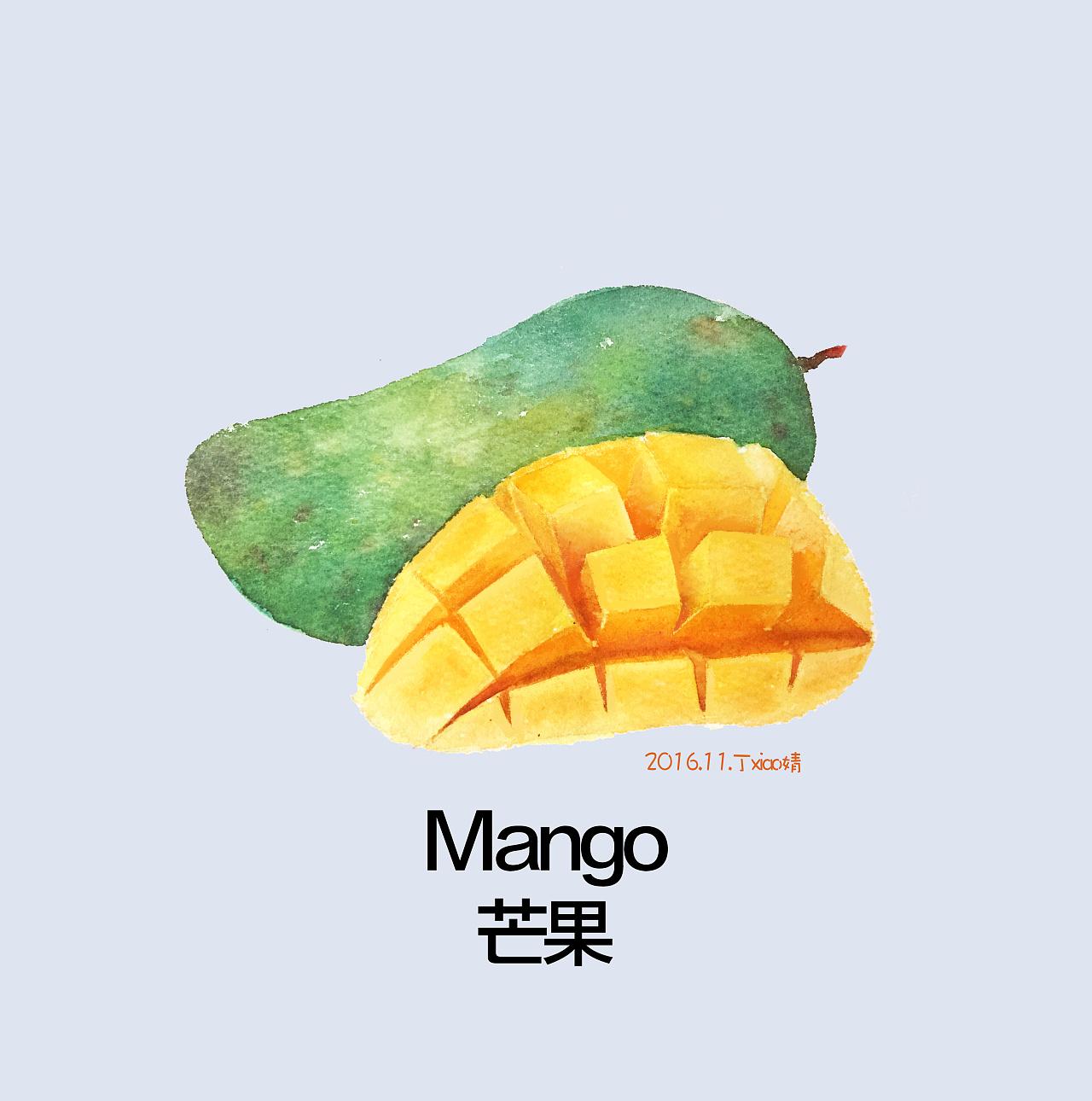 手绘水彩水果系列之芒果每日一图