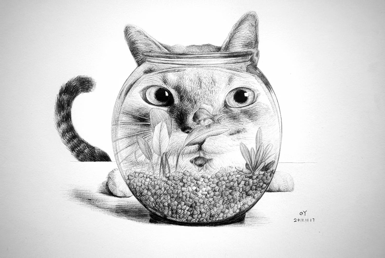 oy钢笔画:大脸猫