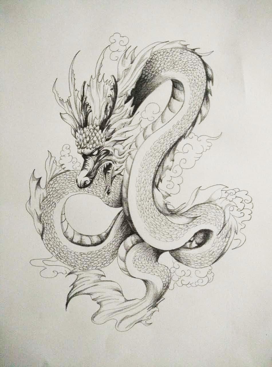 关于龙的素描画-高清工笔龙图片大全图片