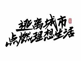 生活相对论/鸿远手写