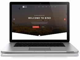 简介大气英文网站设计
