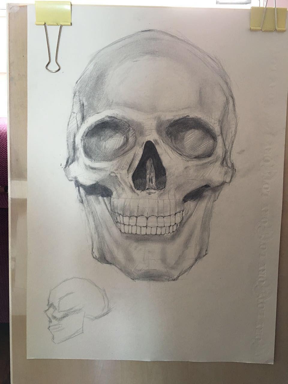骷髅头 素描图片