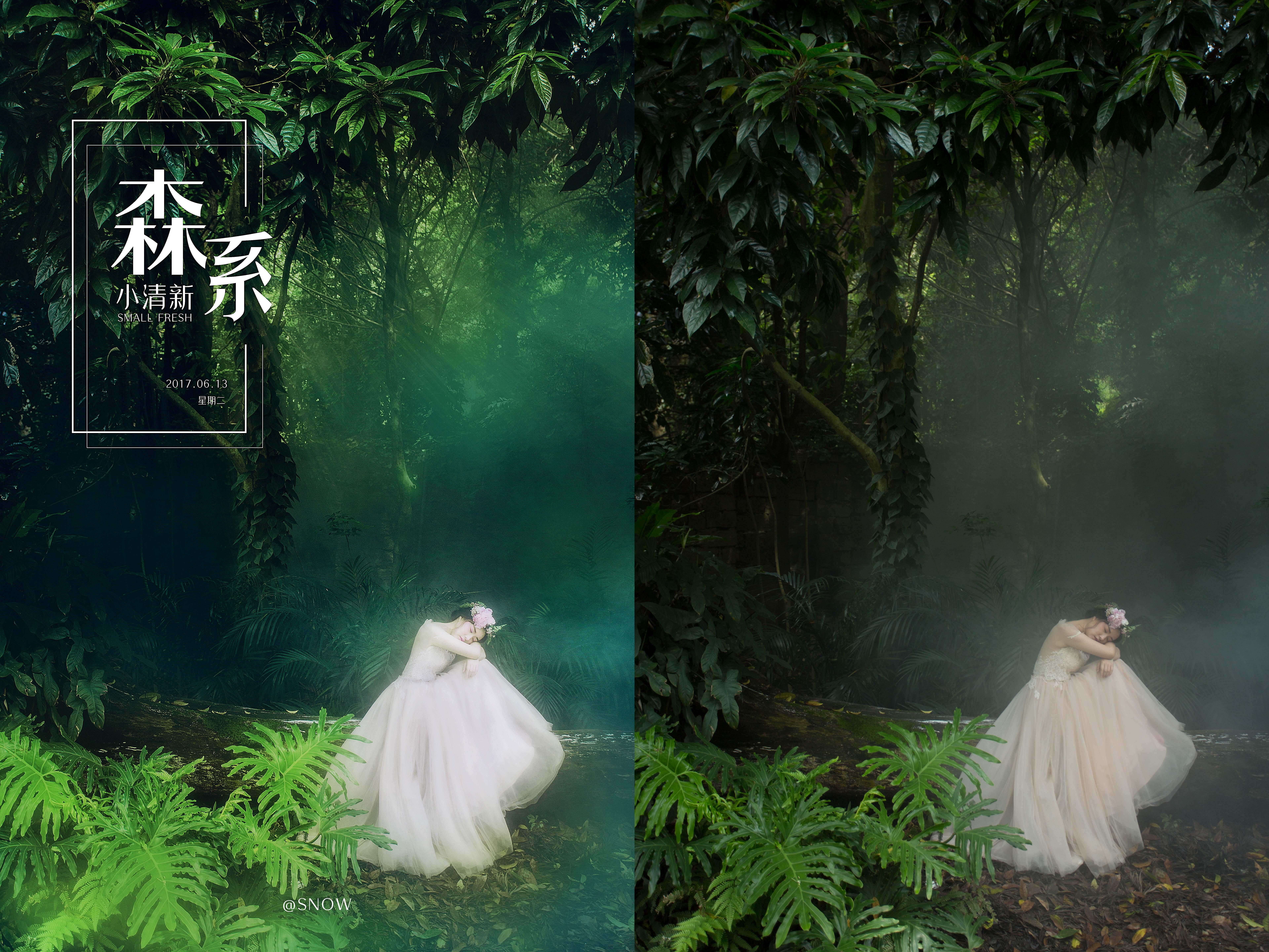 森系-婚纱照图片