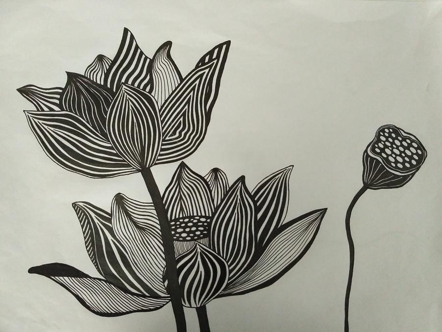 装饰画 之 植物 (荷花)