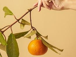 美人橙/论如何优雅的吃橙子