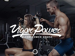 VIGOR POWER HOUSE — vph