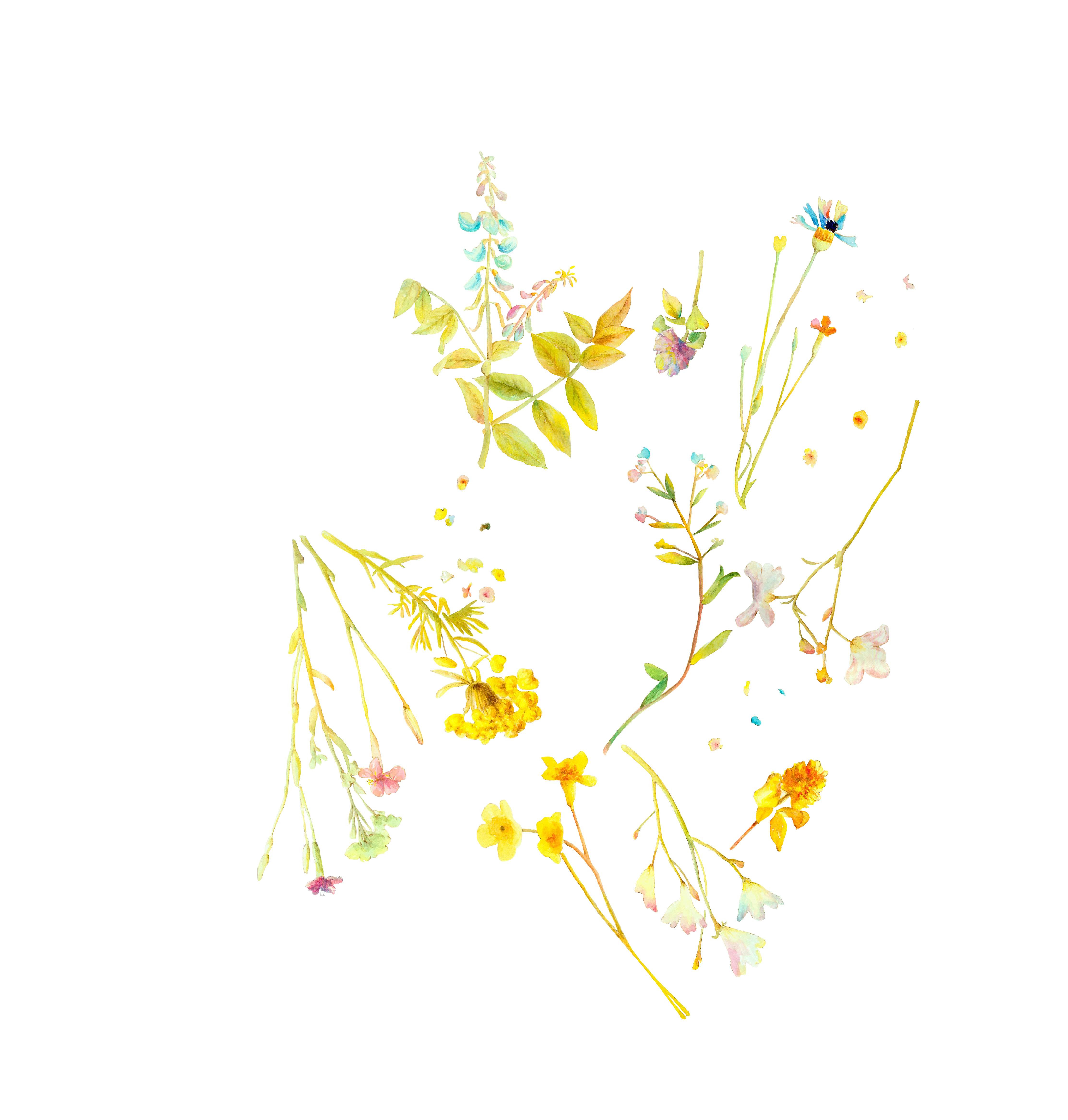 手绘花型图案