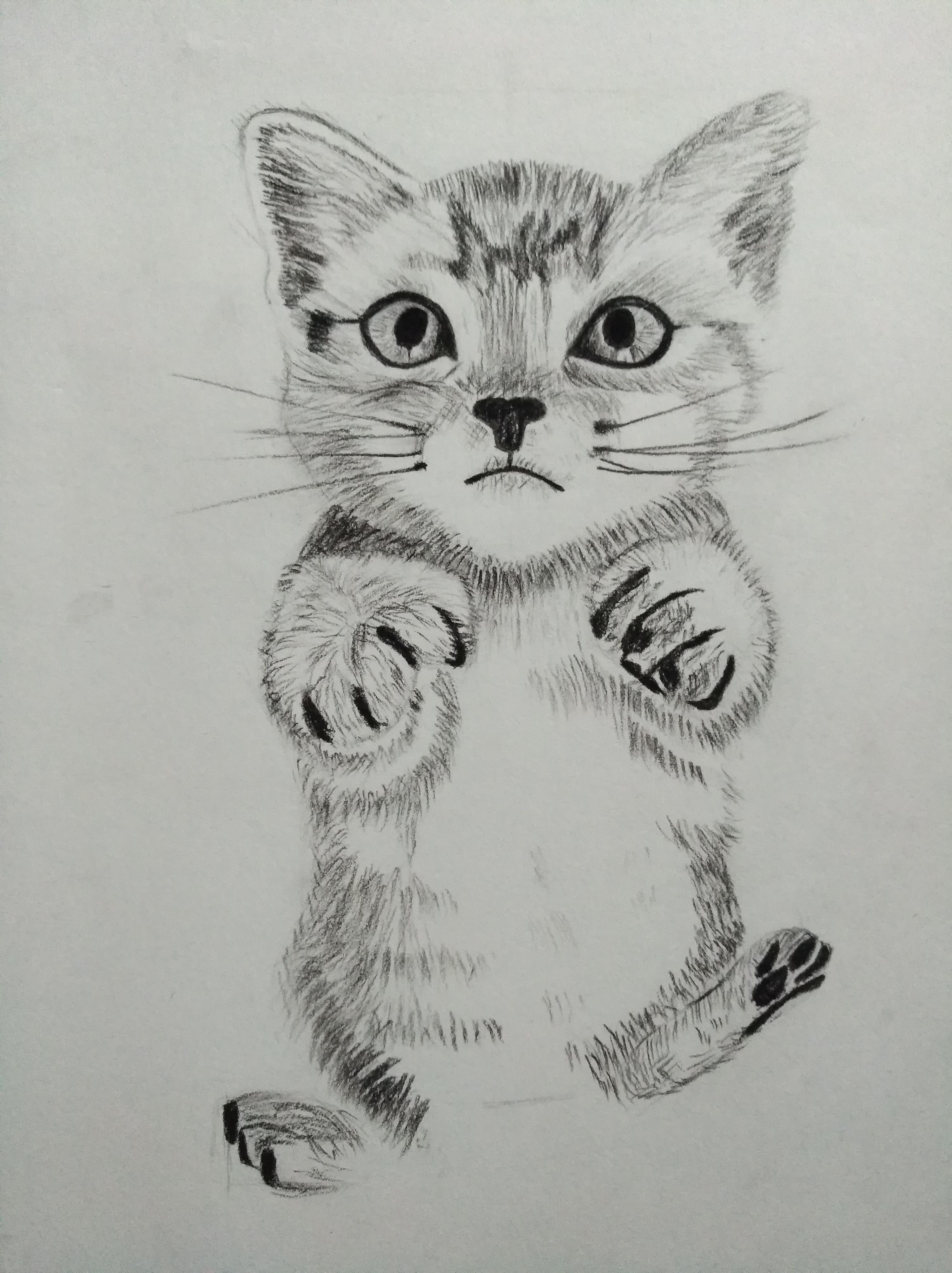 简笔画 手绘 素描 线稿 3000_4011 竖版 竖屏