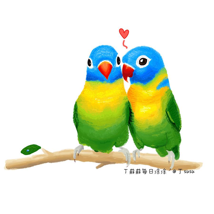 涂鸦手绘墙鹦鹉