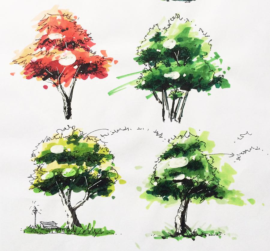 马克笔画树