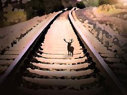 学习之路是孤独的,同时又让人充满期待!