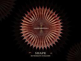 变幻形态#SHAPE