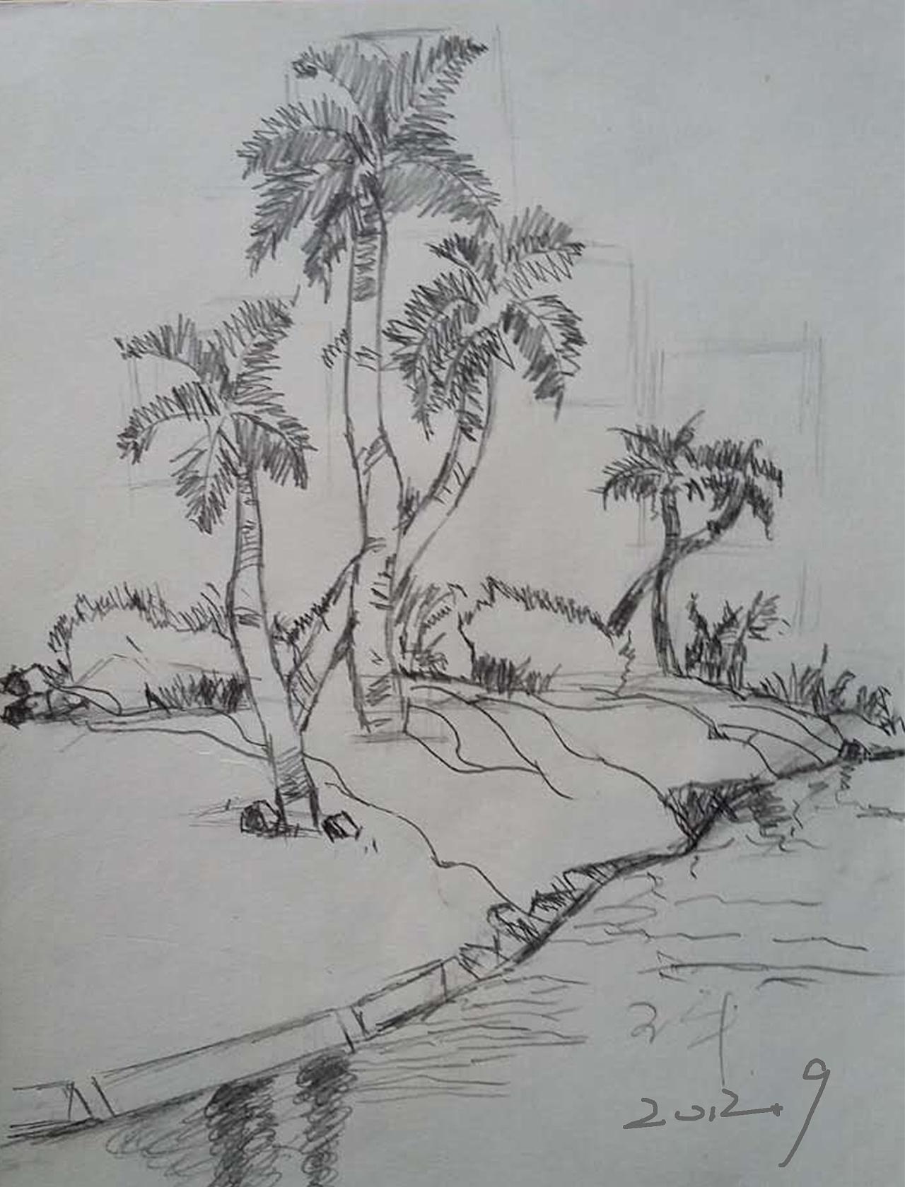 海南边椰树风景手绘速写素描图