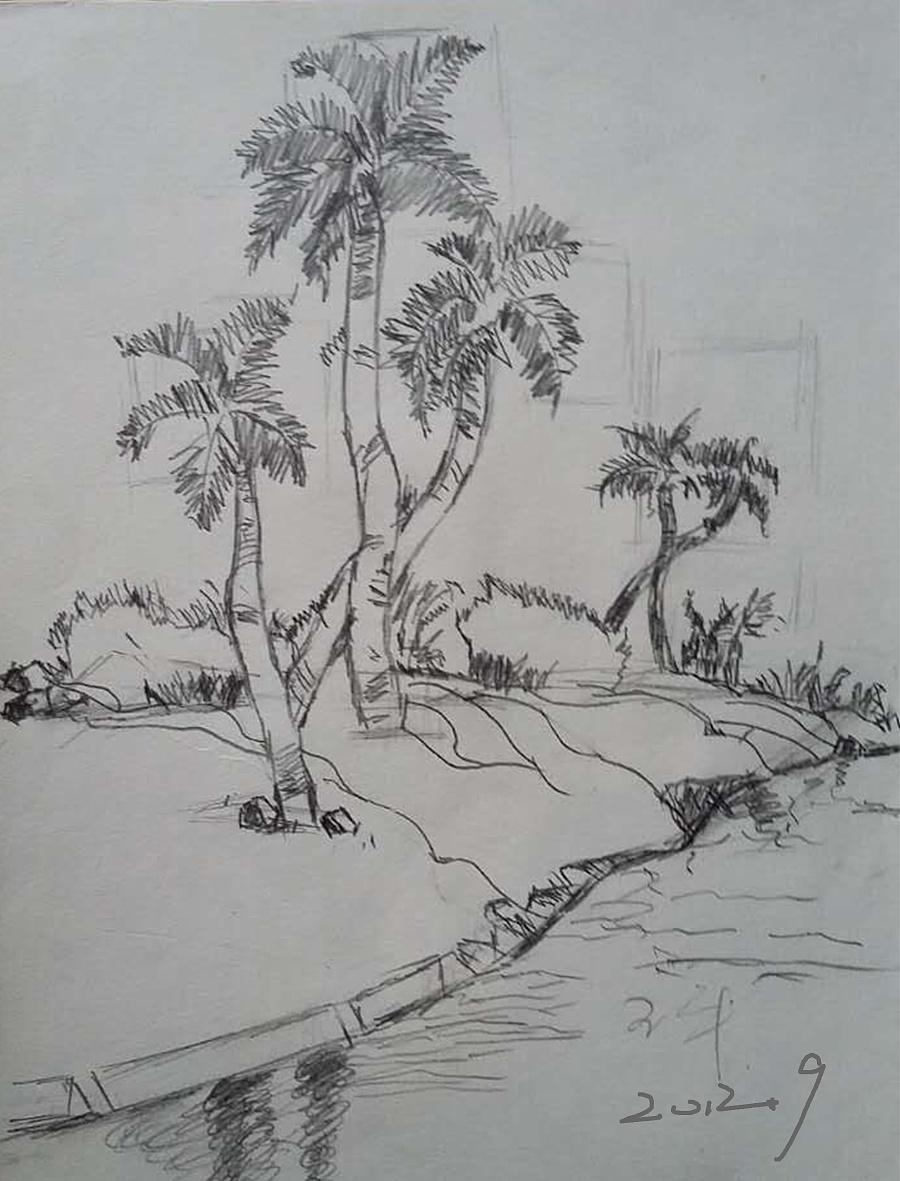 海南边椰树风景手绘速写素描图|素描|纯艺术|90houun