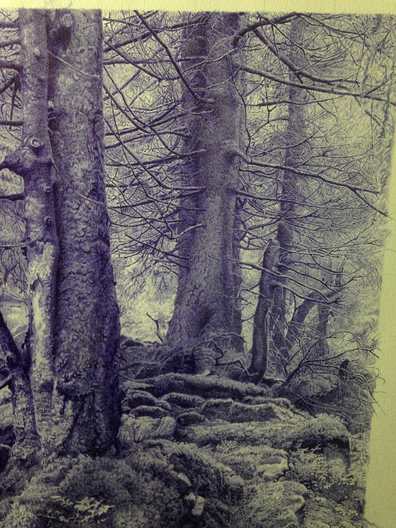 圆珠笔画---《森林一》