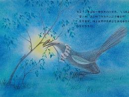 《飞飞的梦想》原创绘本 色粉插画