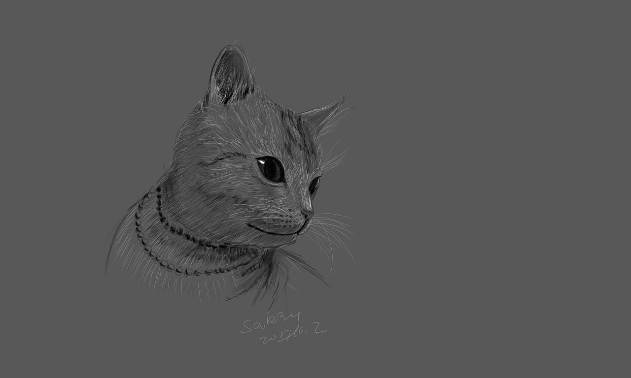 手绘猫咪电脑背景