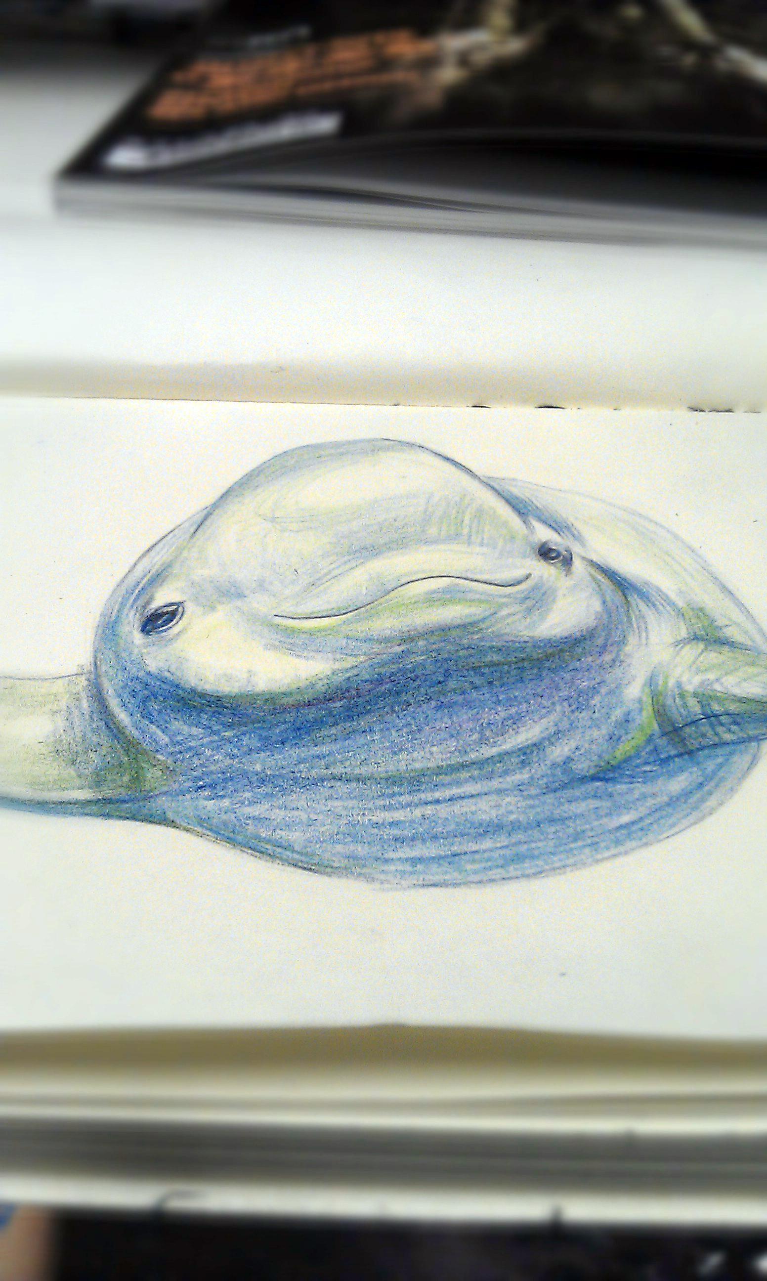 http://www.lnnoo.com/uploads/allimg/150402/1-150402235621H6.jpg_濒临灭绝的动物\
