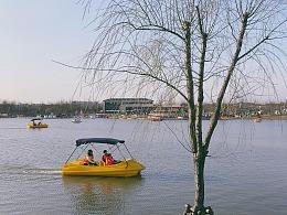 手机摄影 - 上海 - 浦江郊野公园
