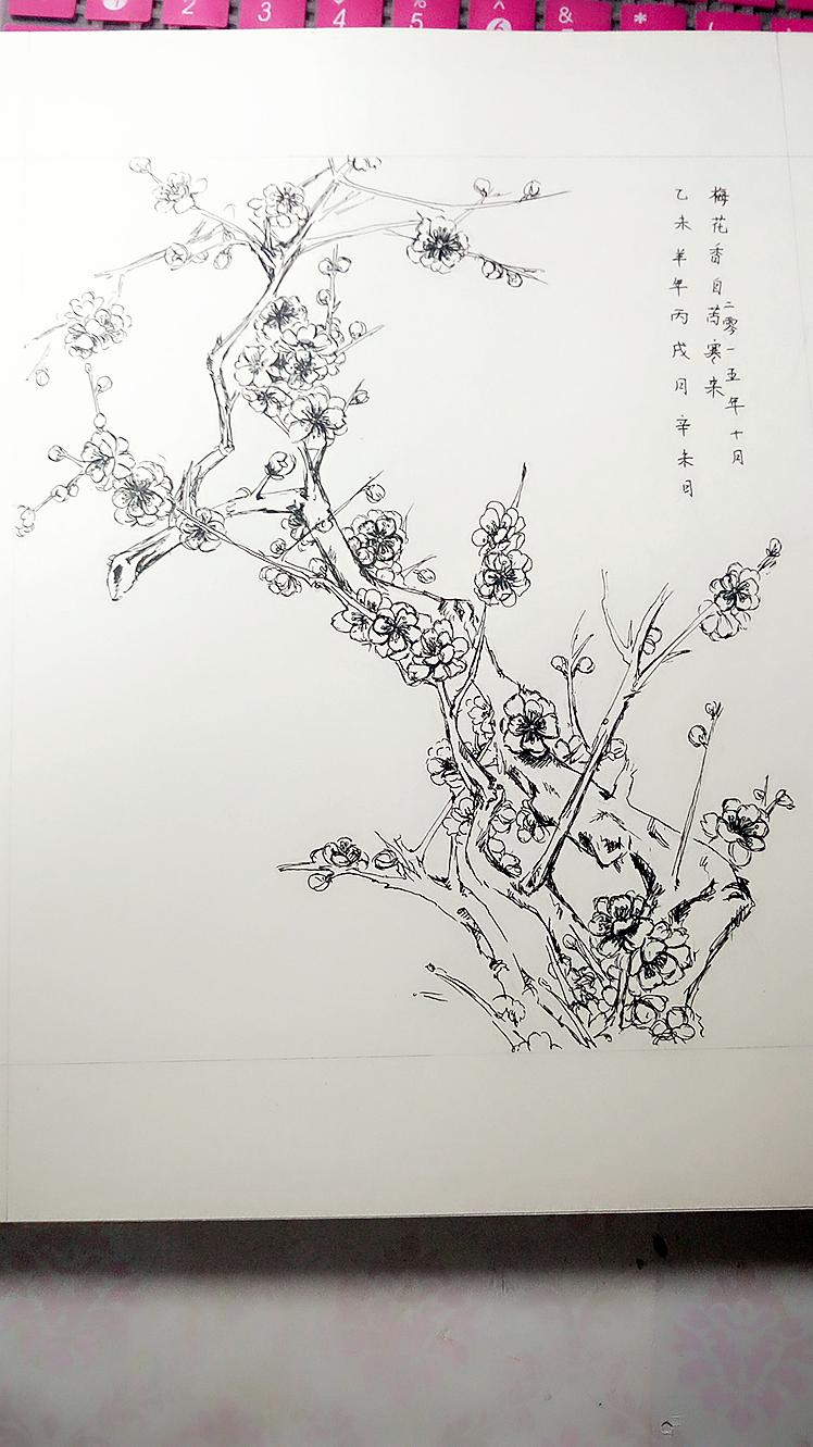 另一版梅花,|纯艺术|钢笔画|猴小孬 - 原创作品图片