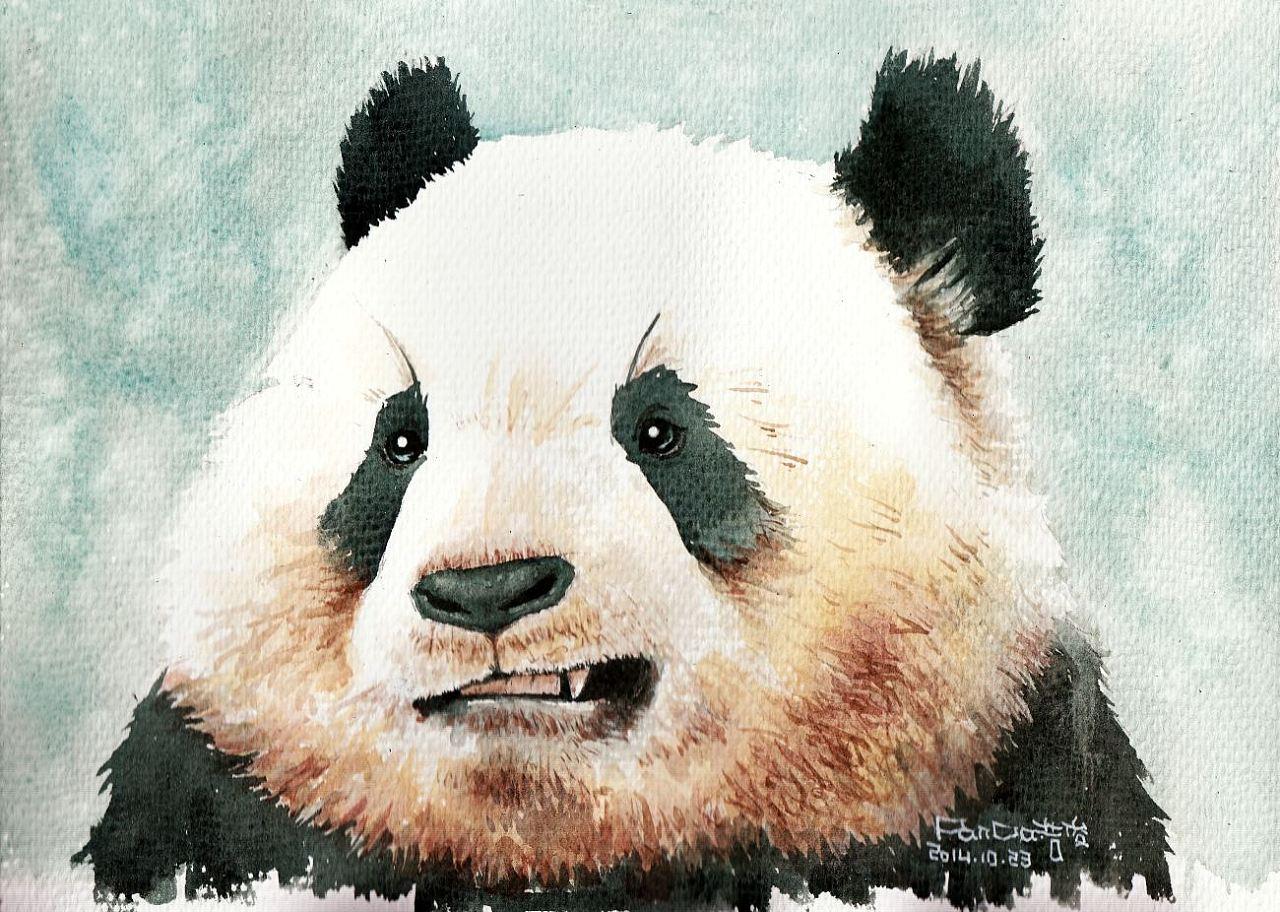 动物水彩手绘图