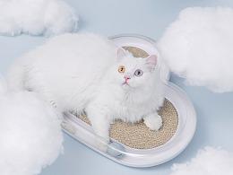 【摄影】在云上养一只猫for Furrytail猫抓板