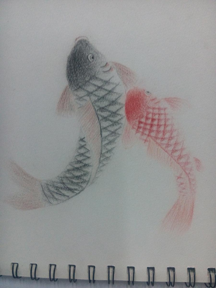原创作品:手绘素描练习