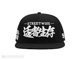 "STRETAG®""STREETWISE适者生存"" 经典平沿棒球帽"