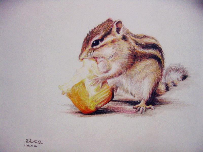 彩铅小动物