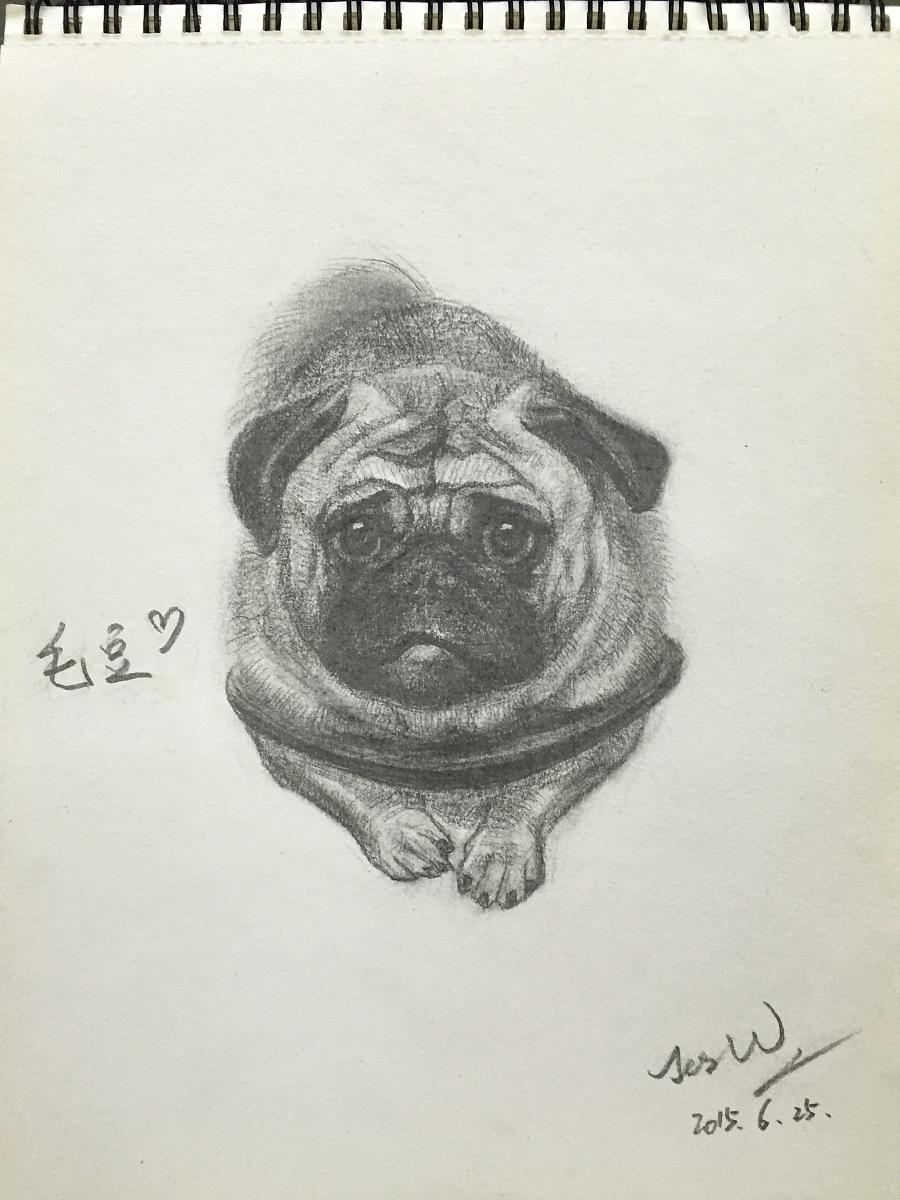 原创作品:狗-铅笔画