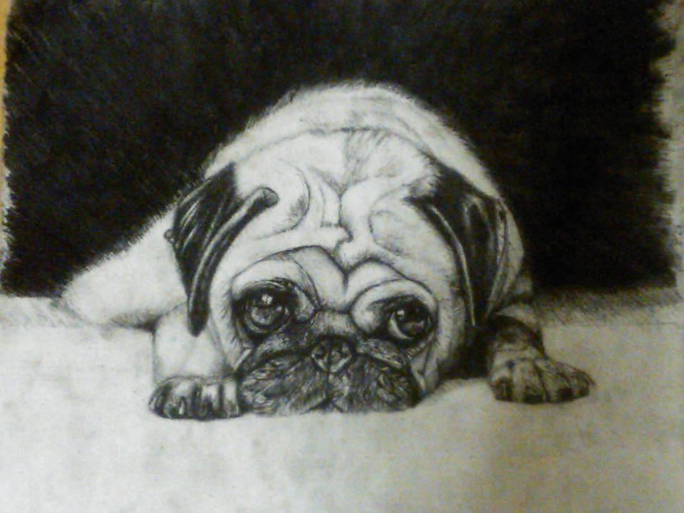 针管笔画--狗