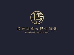 Q参logo设计-已注册