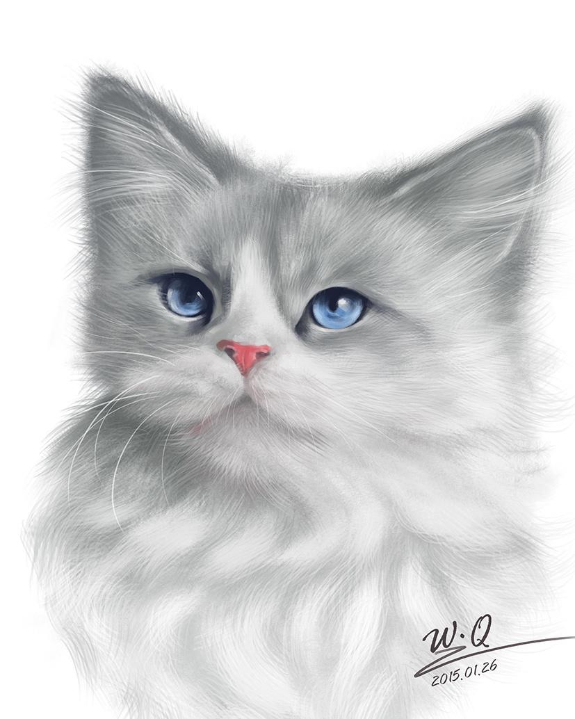 手绘风景猫壁纸