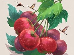 水果里的二十四节气插画合集 | 猫与婵